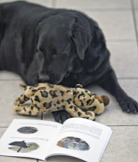 Bun-Bun check out his book.